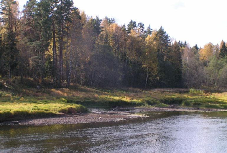 001 вышний волочёк, тверецкий канал и река цна с рисунка ми сердюкова